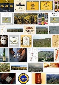 Alsace suivi ou non d'un nom de lieu-dit (aoc-aop)
