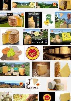 Cantal (aoc-aop)